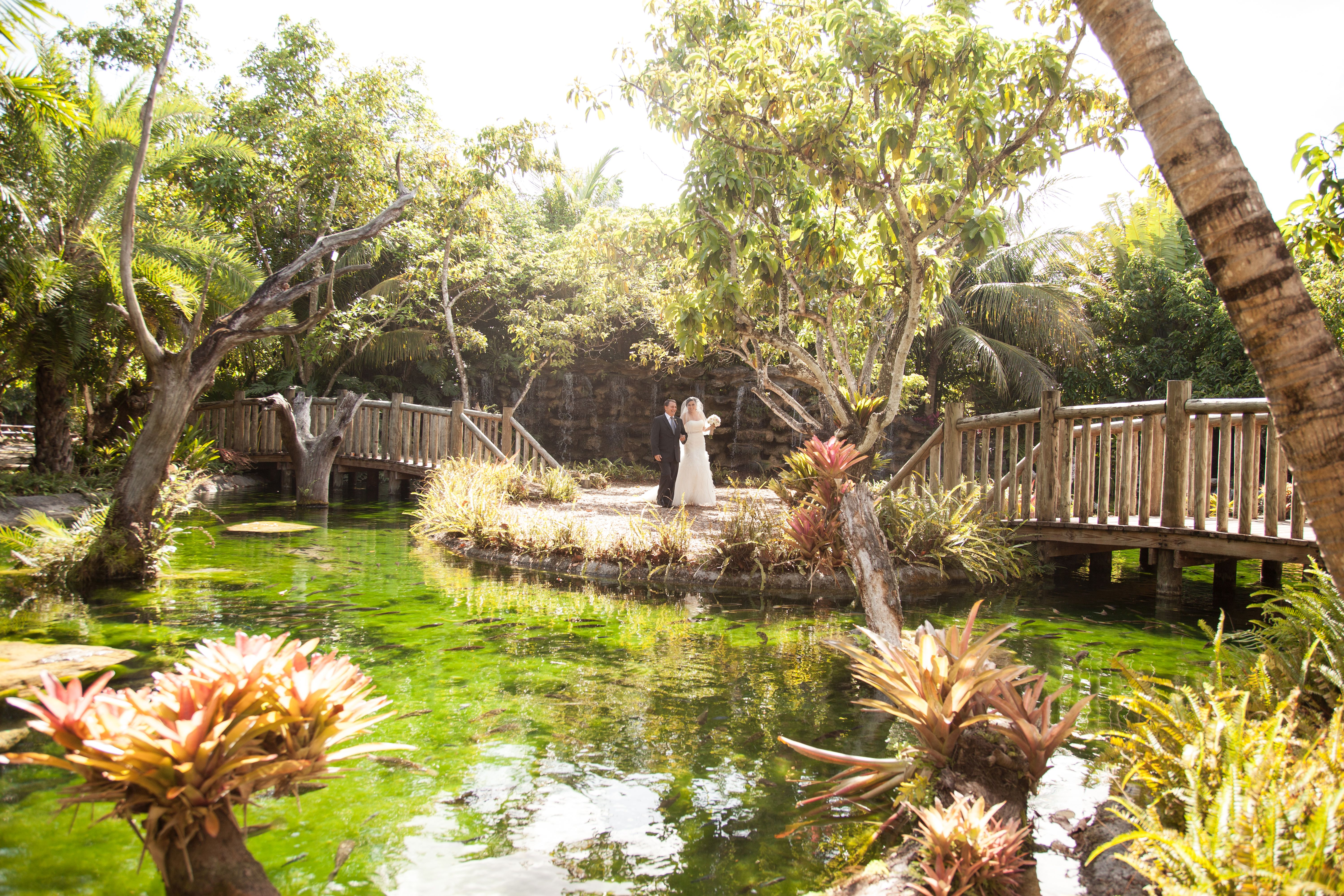 The Old Grove Wedding Packages In Miami